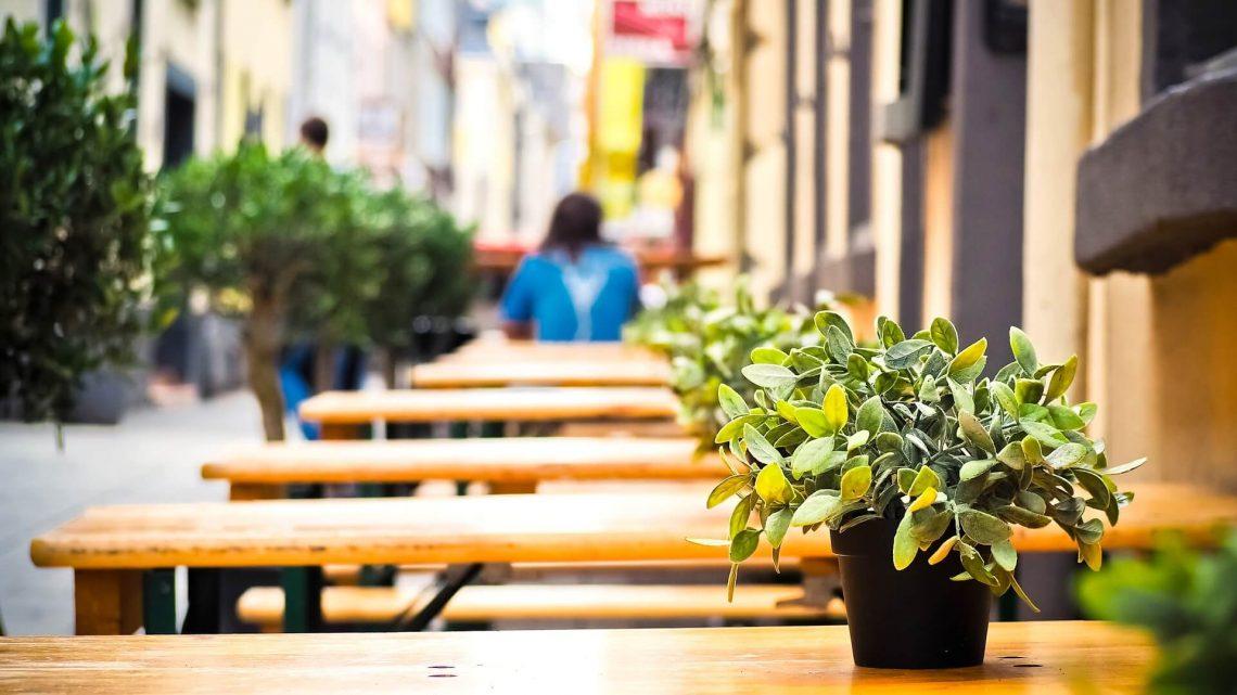 Projet d'une école de permaculture à Nice